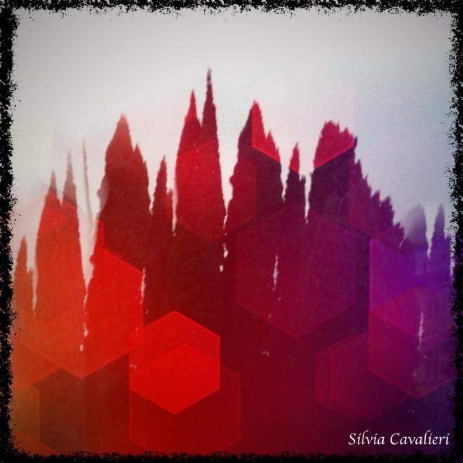 Cipressi cubisti