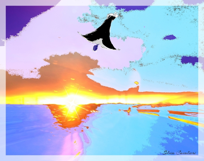 tramonto con volo