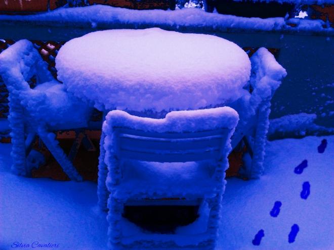 orme in un'alba di neve