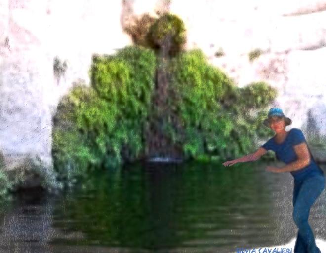 Pellegrina alla fonte di asclepio
