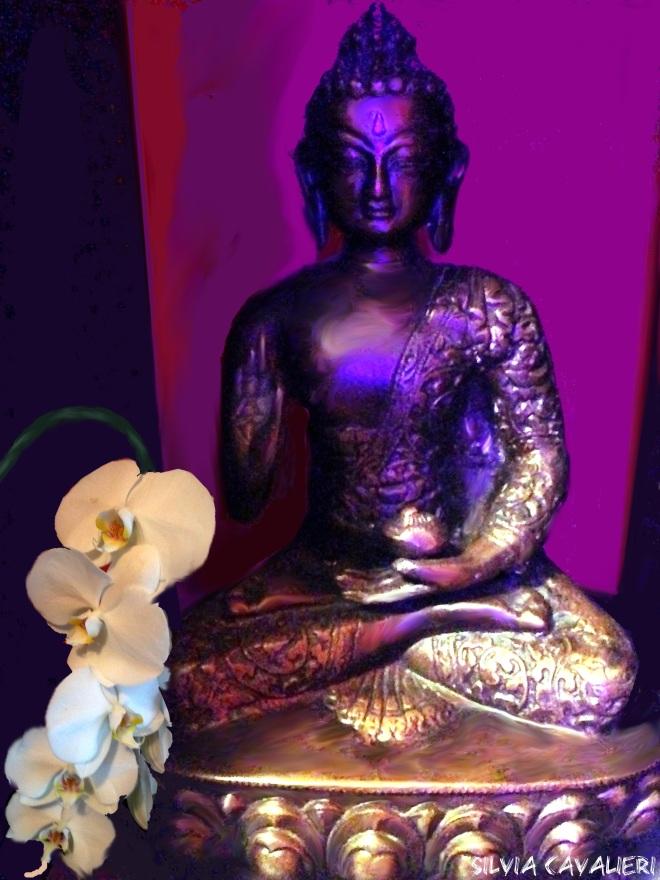 Buddha con phalaenopsis