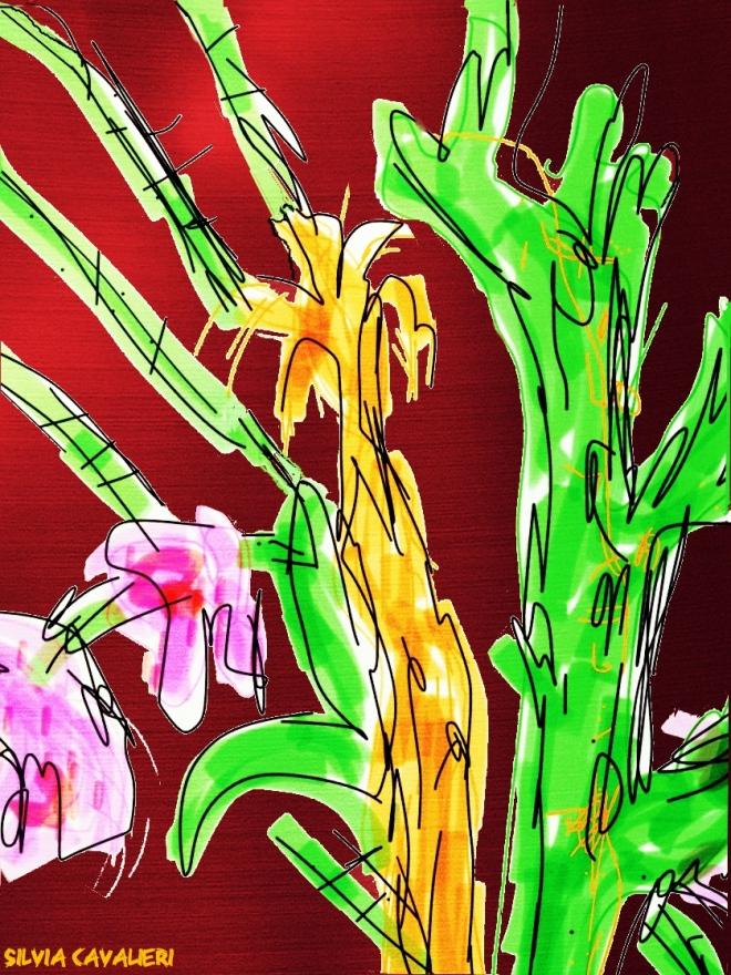 cactus lacustre nel tramonto